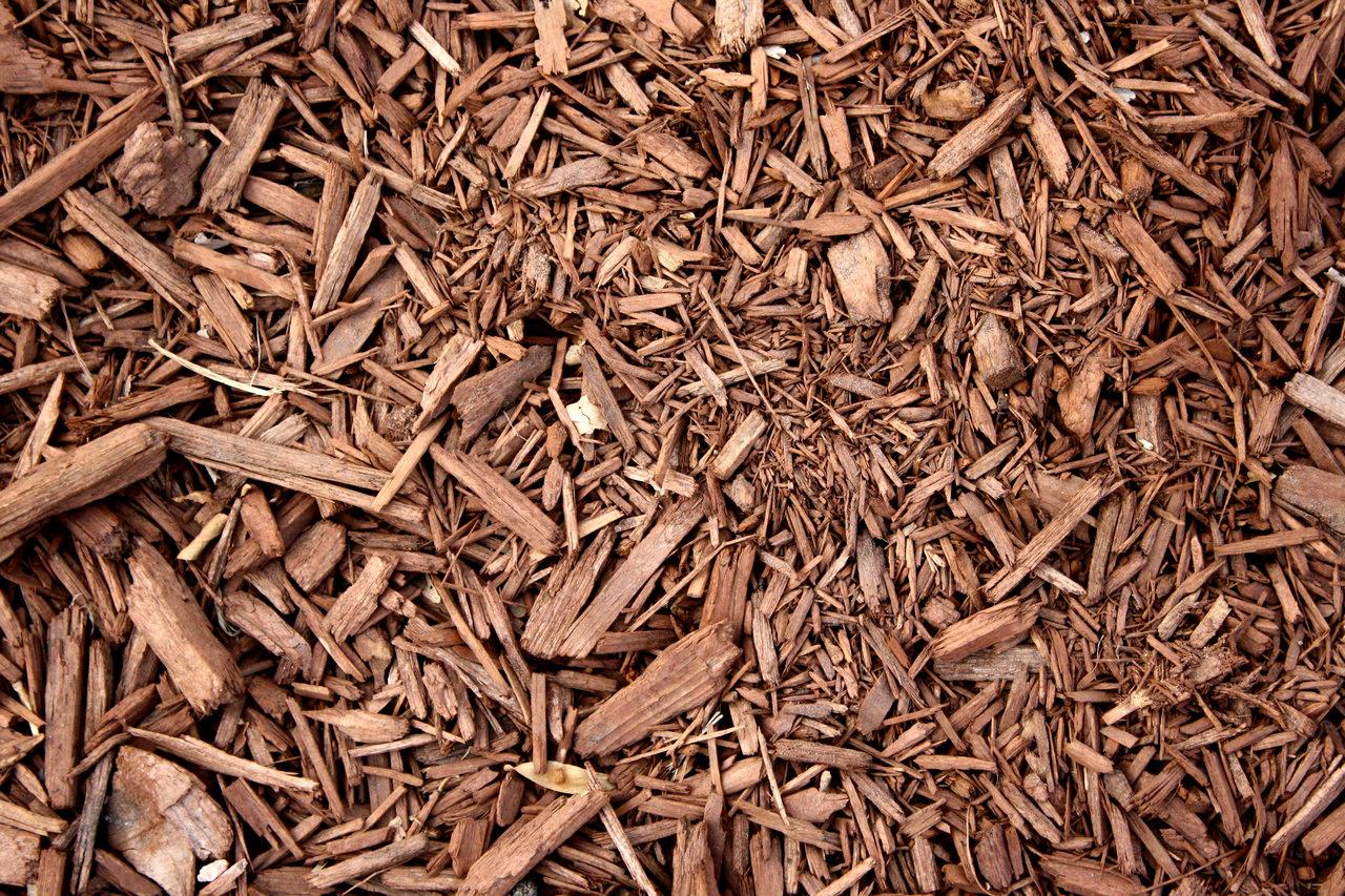 Juango Log 237 Stica Forestal Juango Log 237 Stica